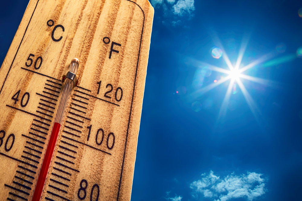 Seattle Residents Need to Stay Well-Hydrated and Cool