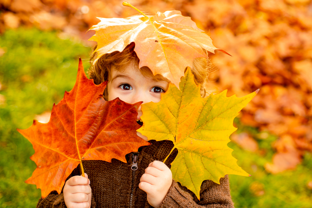 When Should You Call Cascade Energy Services for Fall HVAC Tune-Up & Preventative Maintenance in Lake Stevens?